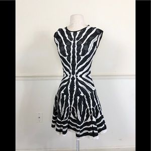 RVN small Black white Bengal stripe skater dress
